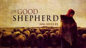 Good Shepherd 2